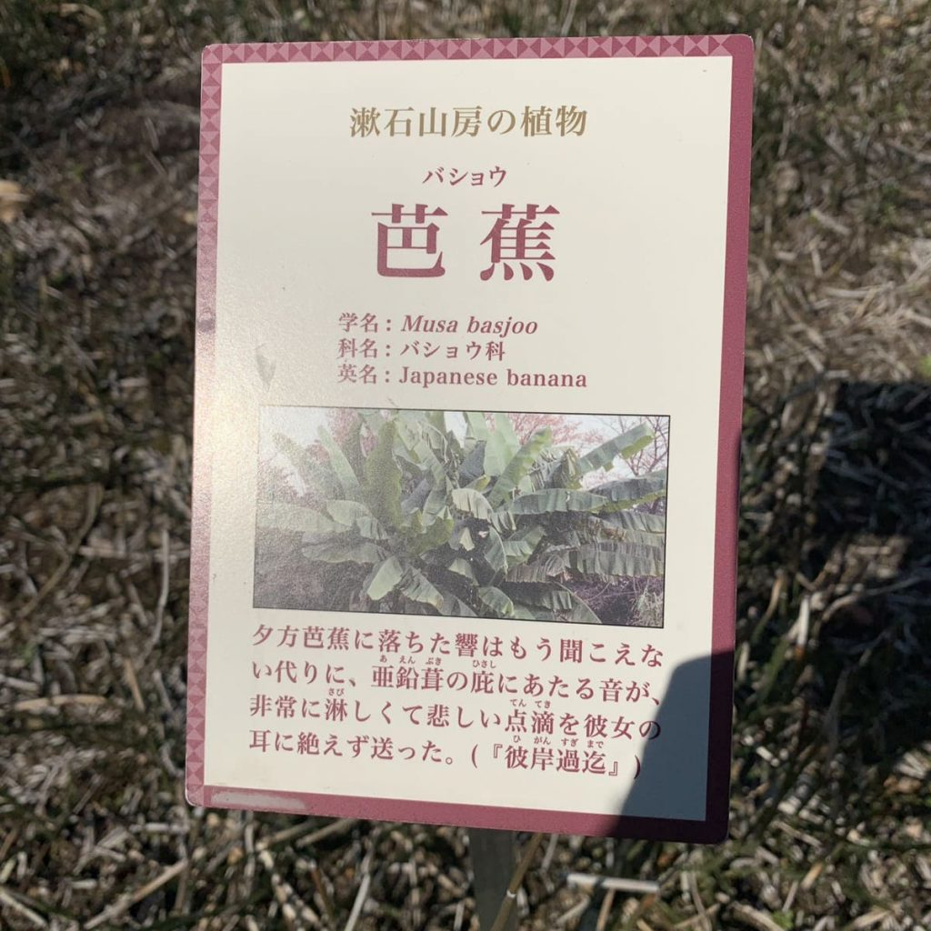 漱石山房記念館 漱石公園